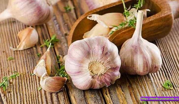 Чеснок: лечебные свойства чеснока и противопоказания. Народные рецепты с чесноком