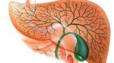 Лекарственный гепатит. Как защитить печень от лекарственных препаратов