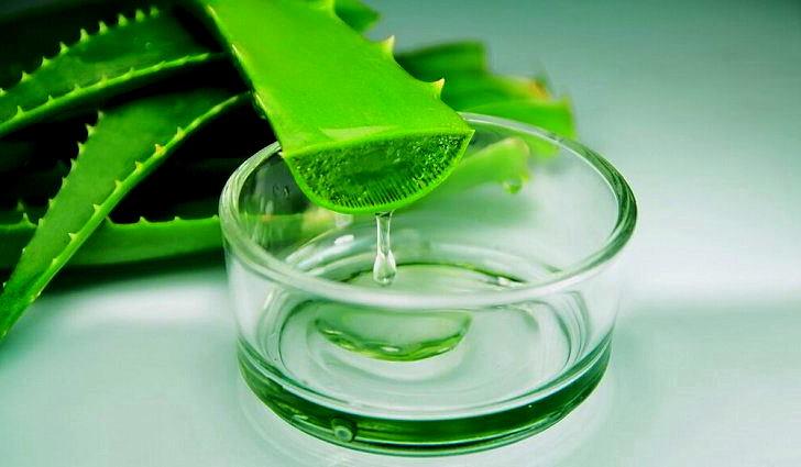 Свежевыжатый сок алоэ для лечения пневмонии